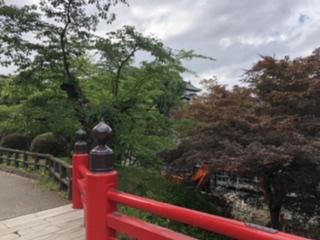石垣工事垣間見る本丸の天守閣